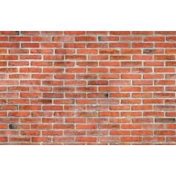 Castle Brick- 313 Pavlov